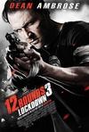 12回合3:致命禁闭 12 Rounds 3: Lockdown