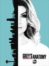 实习医生格蕾 第十三季 Grey's Anatomy Season 13