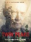 双峰 Twin Peaks