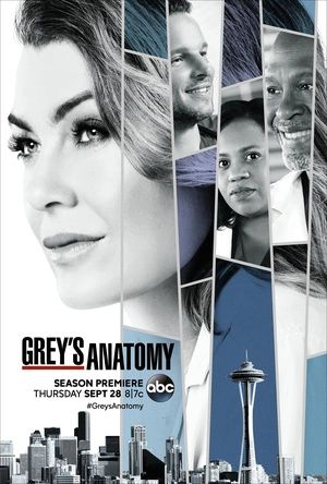 实习医生格蕾 第十四季 Grey's Anatomy Season 14